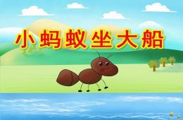幼儿园动物儿歌小蚂蚁坐大船PPT课件配音音乐