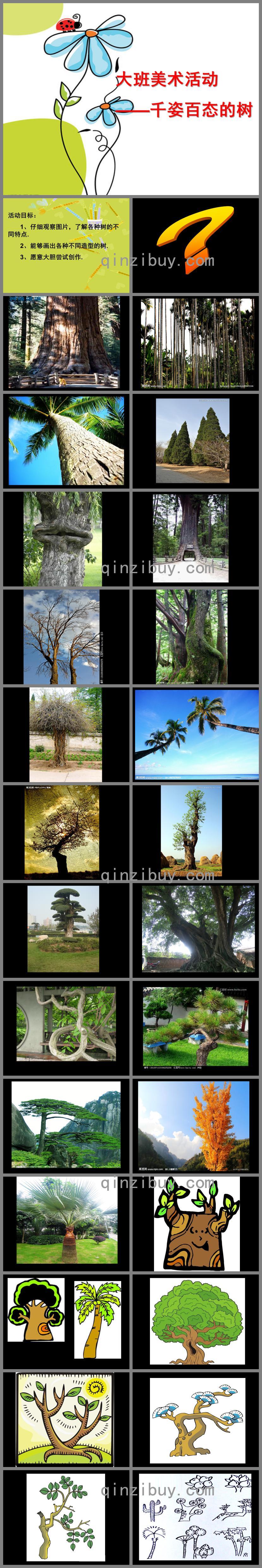 大班美术千姿百态的树各种各样的树PPT课件
