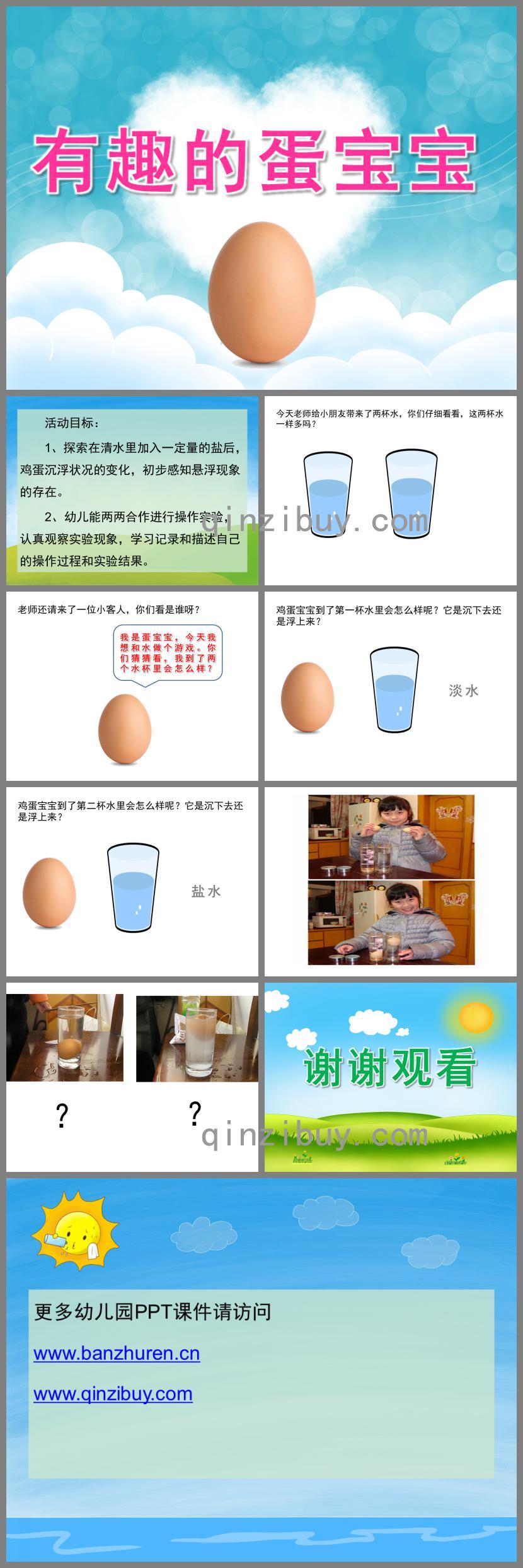 大班科学有趣的蛋宝宝PPT课件
