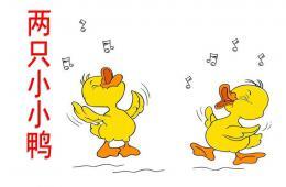 幼儿园艺术领域两只小小鸭PPT课件音乐