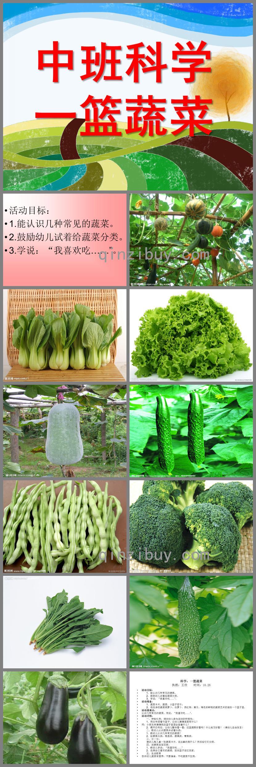 中班科学一篮蔬菜PPT课件