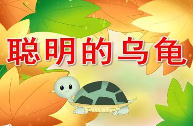 聪明的乌龟PPT故事图片课件教案