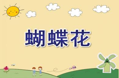 中班音乐蝴蝶花PPT课件教案