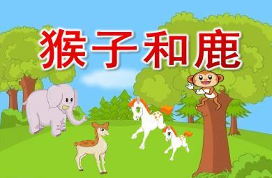中班社会猴子和鹿PPT课件教案