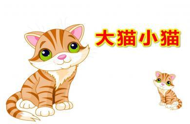 小班数学大猫小猫PPT课件教案