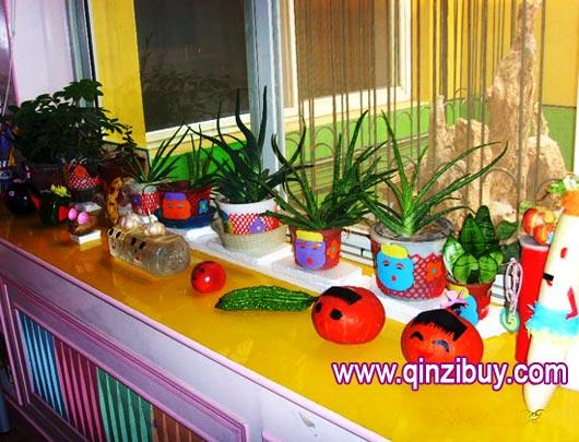 区角环境:植物角—幼儿园环境布置图片