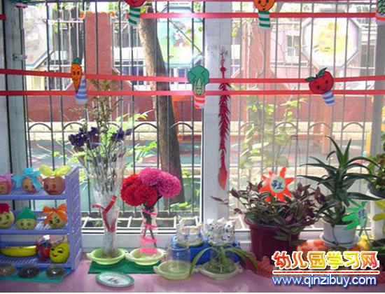 漂亮的植物│幼儿园植物角布置
