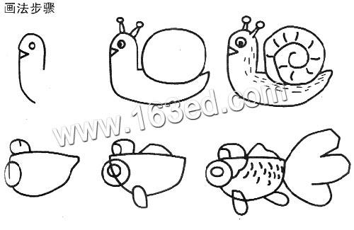 动物简笔画:蜗牛