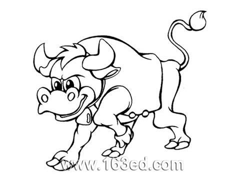 动物简笔画 疯狂斗牛
