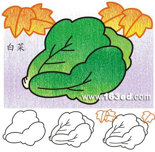 各种水果蔬菜的简笔画各种水果图片简笔画各种蔬