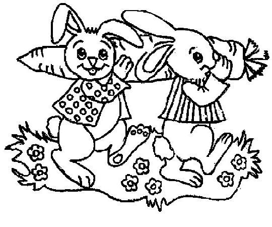两只兔子抬一个胡萝卜简笔画-两只兔子抬一个胡萝卜