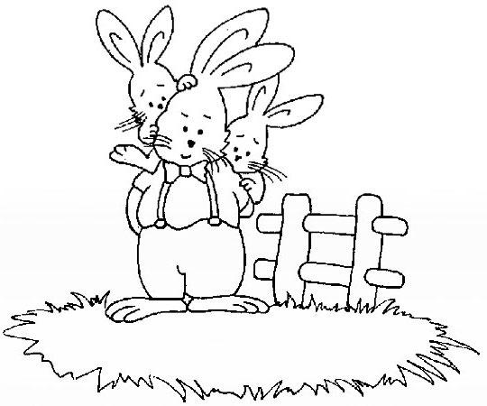 两只兔子简笔画 兔子简笔画图片大全 小兔子简笔画