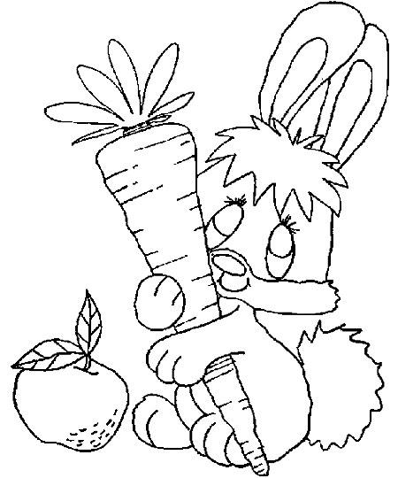 兔子抱着胡萝卜的简笔画