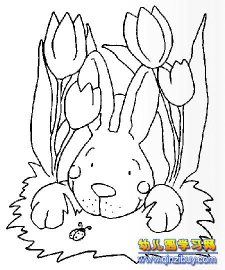 小孩睡觉简笔画图片,睡觉时的小婴儿简笔画,动物睡觉简笔画,睡