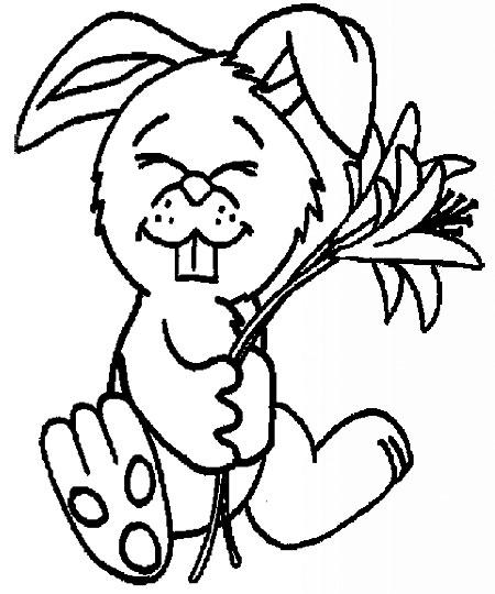 小兔子吃草的简笔画—幼儿园学习网