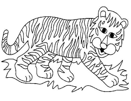 老虎的简笔画5