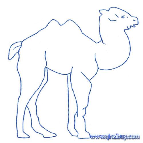 动物简笔画 一只骆驼7