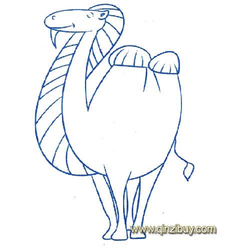 动物简笔画:站立的骆驼4