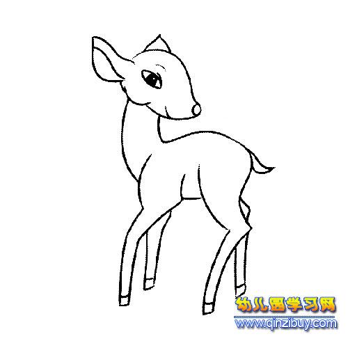 小鹿怎么画简笔画图片_小鹿简笔画大全