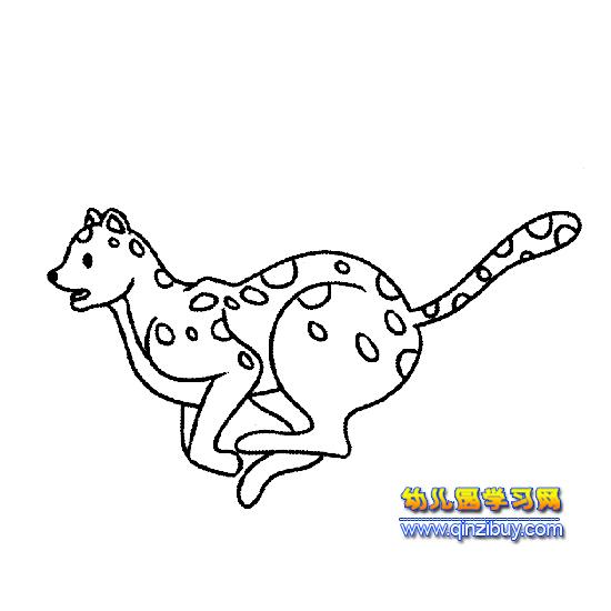 奔跑的豹子简笔画4—幼儿园教案网
