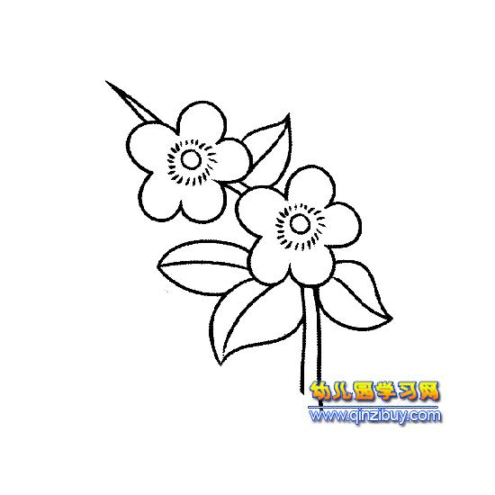 简笔画:两朵梅花3—幼儿园学习网