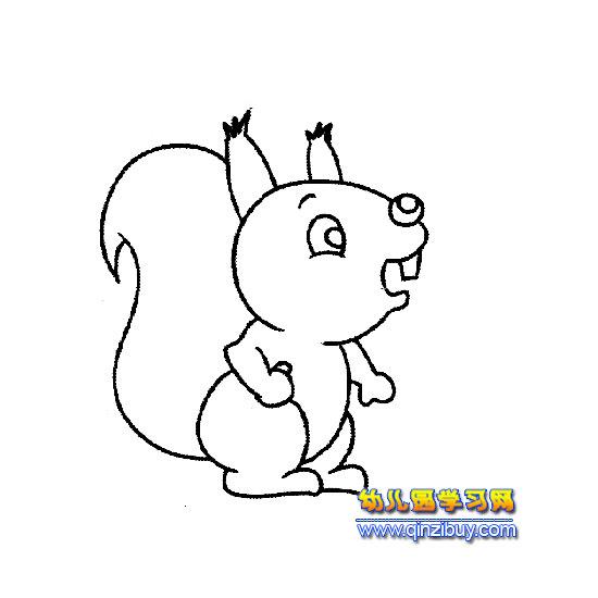 简笔画 松鼠宝宝2