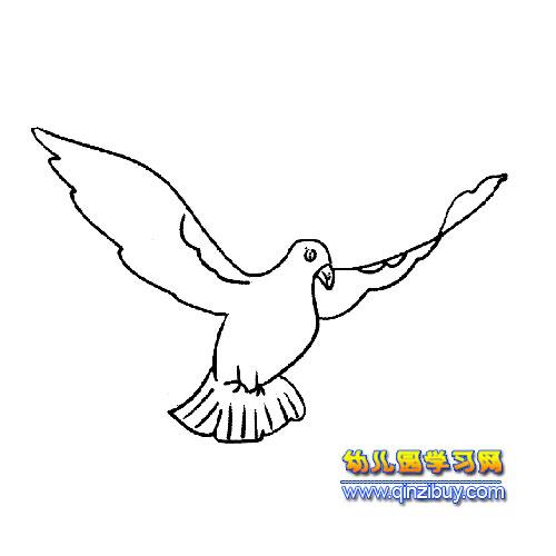 展翅的小鸟简笔画