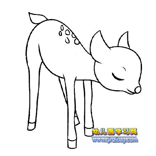 闻花的小鹿简笔画