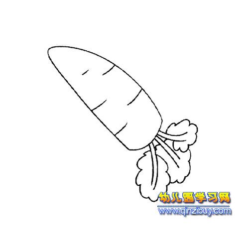 简笔画:好吃的萝卜5—幼儿园教案网