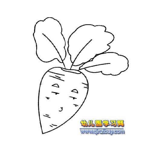 简笔画:卡通萝卜3—幼儿园教案网