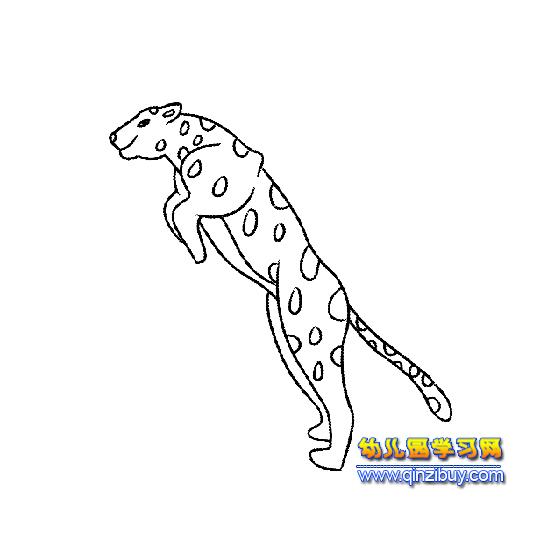 跳跃的豹子简笔画