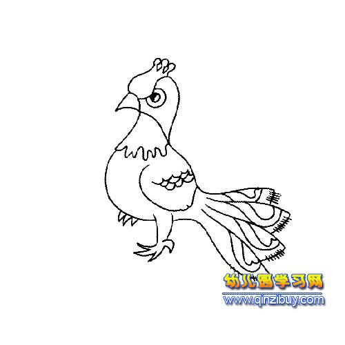 可爱的小孔雀简笔画4—幼儿园教案网
