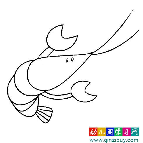 长胡须小虾1 简笔画