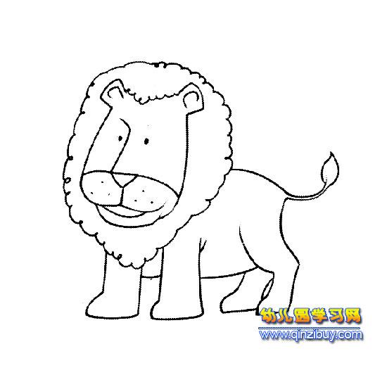 动物简笔画 狮子2