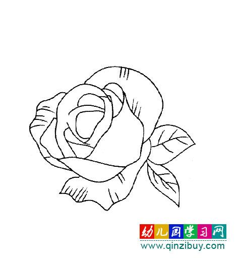 简笔画:一朵玫瑰花—幼儿园学习网