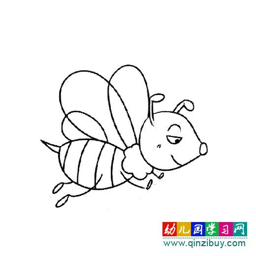 简笔画:勤劳的小蜜蜂—幼儿园教案网