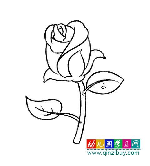儿童画梨花的简笔画图片_儿童画梨花的简笔画图片