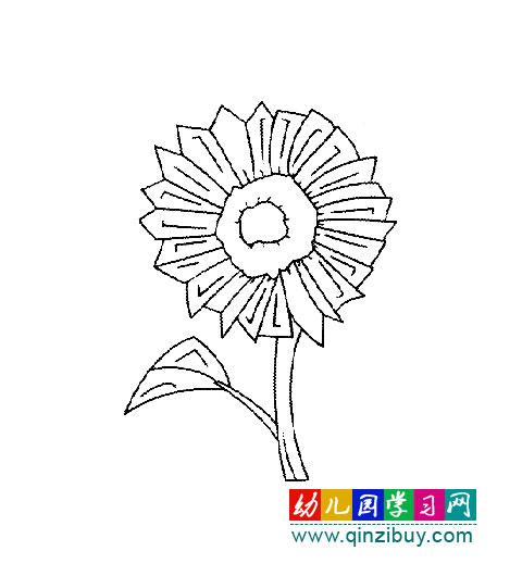 简笔画:向阳向日葵2—幼儿园教案网