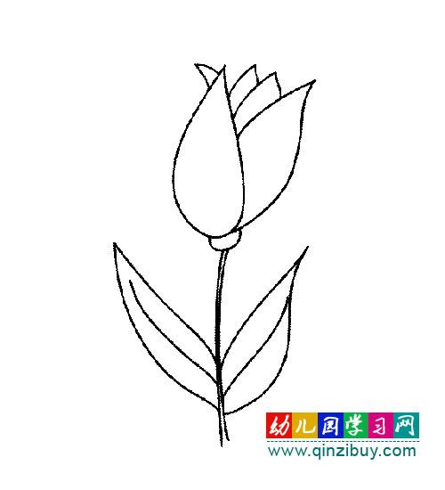 美丽的花园简笔画大全_花园简笔画彩色图片