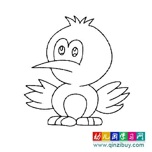 刚孵化的白头翁(简笔画)—幼儿园教案网