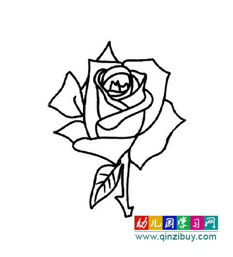 教画玫瑰花 花的简笔画 玫瑰花画法步骤加图片 画一朵玫瑰花