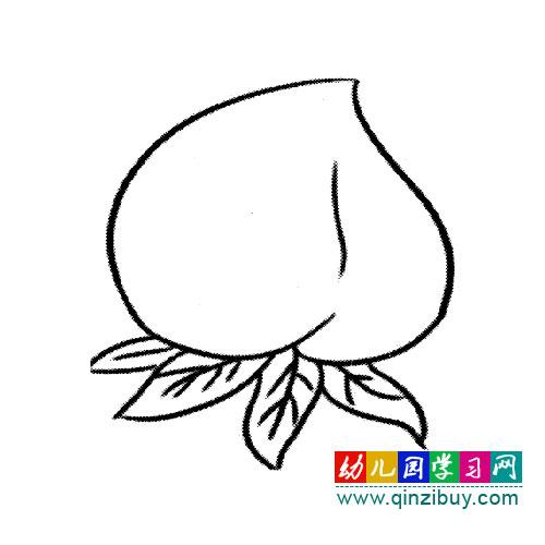 简笔画:美味的桃子-幼儿园教案网