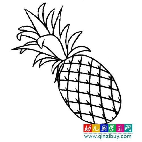 水果简笔画:新鲜的菠萝—幼儿园教案网
