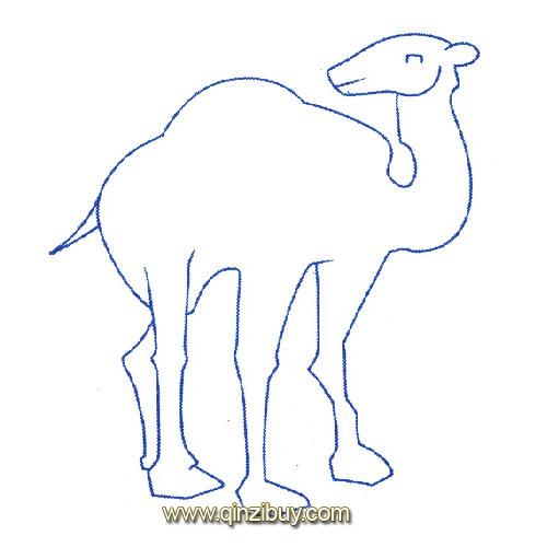 动物简笔画 回头看的骆驼