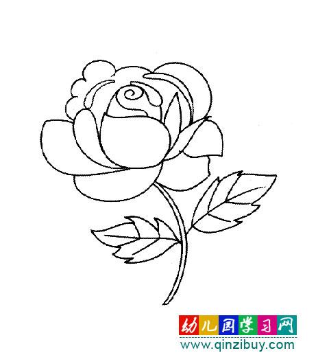 美丽的花简笔画大全