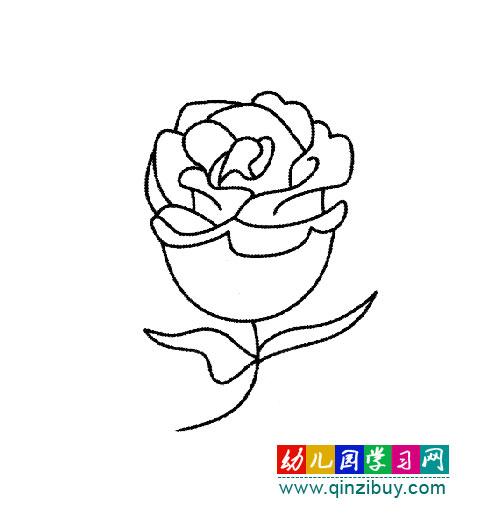一支美丽的玫瑰花(简笔画)