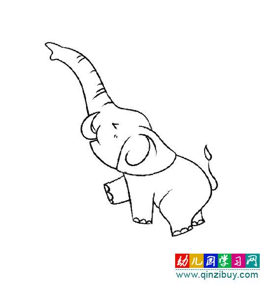 动物简笔画:大象鼻子很有用—幼儿园教案网