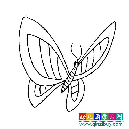 简笔画:翩翩起舞的蝴蝶—幼儿园教案网