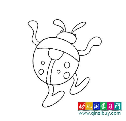 简笔画:一只瓢虫在走路—幼儿园教案网