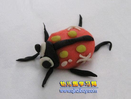 幼儿橡皮泥作品:瓢虫—幼儿园教案网